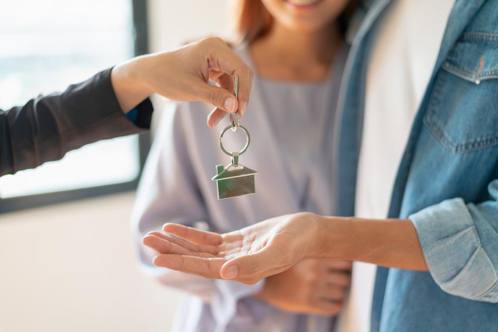 A propos de papernest crédit immobilier