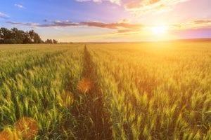 Aide logement saisonniers agricoles crise sanitaire