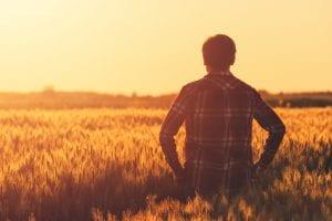 Aide logement saisonniers agricoles revenus en baisse