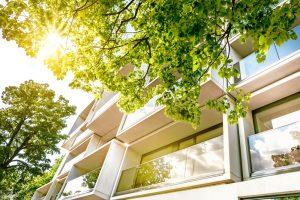 contrat location appartement entre particuliers